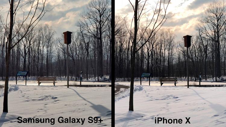 Сравнение камер Galaxy S9+ и iPhone X